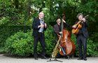 Trio Demi-Sec - muziekband