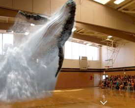 Magic Leap Conjures Up a Whale on Your Event