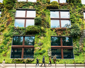 23 Green Corners You Can Create for Your Next Event